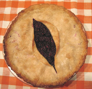 Blackberry Muff Pie